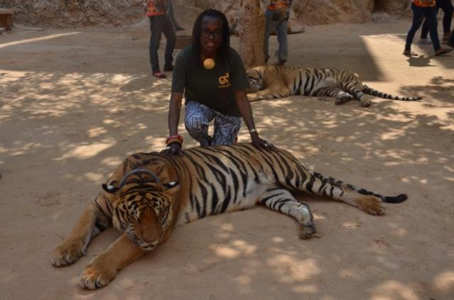 At the tiger temple.
