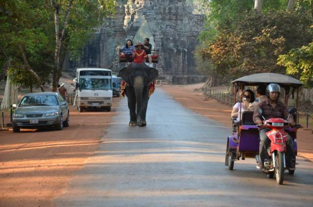 An elephant at one of the temples in Siem Reap