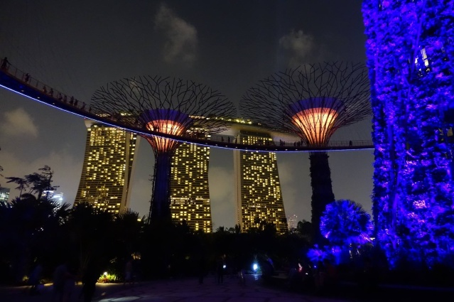 Singapore super-trees with a backdrop of Marina Bay Sands hotel.