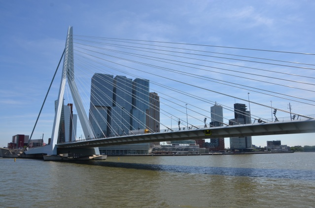 The Erasmus bridge