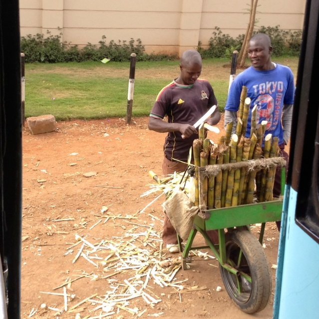 Sugar cane seller