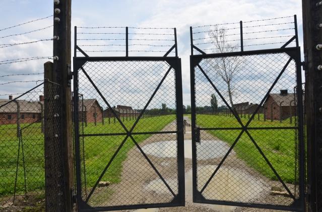 History lies behind the fences of Auschwitz- Birkenau